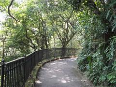 (procrast8) Tags: hong kong island china victoria peak mount austin lugard road