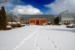 Garfield in Winter (Andy Marfia) Tags: chicago garfieldpark conservatory winter rear entrance snow blue sky footsteps d7500 1685mm 11000sec f8 iso100