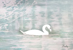 """""""Serene Swan""""   edith-dooley.pixels.com Prints and more are available. (Edie54) Tags: swan serene swim lake pond trees bushes relax relaxing nature animal bird forest woods beauty lady pretty relaxed love lovely acrylic painting happy comfortable trust trusting haven home meadow soothing restful standstill peaceful natural"""