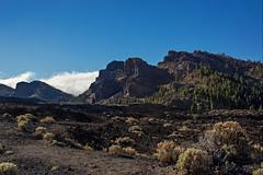 Teide National Park-41 (Fiona French) Tags: spain tenerife holiday holiday2018