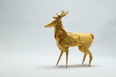Roman Diaz. Deer (kastudio) Tags: roman diaz deer ciervo origami paper art foil tissue
