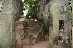 Angkor_Ta Prohm_2014_26