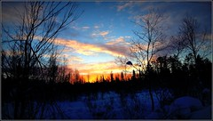 un peu de soleil dans le froid ! (Save planet Earth !) Tags: lapland laponie amcc winter hiver sunrise