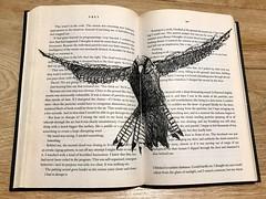 B141-365 one bird a day - Common kestrel - Falco tinnunculus (www.doortje.nl) Tags: falcotinnunculus torenvalk commonkestrel pen ink vogel pájaro uccello passarinho طائر oiseau птица birdo voël 鸟