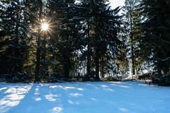 Fuchskaute - Höchste Stelle im Westerwald (Bluespete) Tags: schnee xseries xt3 psifotografie winter frostig landschaft sonnenstern westerwald natur kalt psi wald fujifilm landscape waigandshain rheinlandpfalz deutschland de