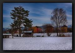 Rundgang durch Hard (einfache Fotomomente) Tags: panasonic dmcg81 ƒ56 250 mm 11000 200 city landschaft bäume siedlung wohnblock berge schnee landscape hütte garten urban dorf gemeinde hard vorarlberg österreich grenznah alpenregion rheintal