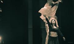Rachel. (Alex-de-Haas) Tags: oogvoornoordholland 70200mm cam cool coolplein coolpleinfestival cultureleamateurmanifestatie d5 dutch heerhugowaard holland mehtab nederland nederlands netherlands nikkor nikon nikond5 noordholland racheldance westfrisia westfriesland westfries amateur art belly bellydance bellydancers bellydancer buik buikdans buikdansen buikdanseres buikdanseressen culture cultuur dance dancers dancing dans dansen dansers entertaining entertainment evenement event fest festival human humans kunst mens mensen optreden people performance person personen persons persoon presentatie presentation show showbiz tummy
