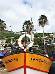 Câmara de Lobos - Funchal (Madeira) (Clàudia Ayuso) Tags: claudia ayuso ramirez claudiayuso funchal madeira camara de lobos cabo girao cape landscape paisaje viaje viatge travel trip clark trips portugal island boat ship color colour beach sea ocean palmtree green sealine tourism