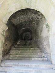 IMG_6472 (Damien Marcellin Tournay) Tags: amphitheatrumromanum antiquité bouchesdurhône arles france amphithéâtre gladiateur gladiators