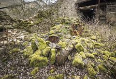 _DSC0193 (Foto-Runner) Tags: urbex lost decay abandonné voiture car épaves pierre mousse