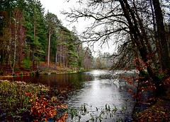 Pitlochry loch (Adair-Photography) Tags: scotland loch pitlochry views lake water trees beautifulscotland beautiful