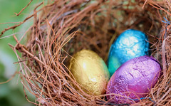 Easter Eggs (dianne_stankiewicz) Tags: macromondays hmm pastel macro eastereggs nest eggs chocolate candy easter