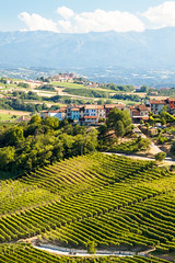 View on the Piedmont Vineyards from La Morra (theseBoetz) Tags: cuneo landscape mountains italy vines hills clouds agriculture blue viticulture barolo sky green vineyards lamorra italia piedmont