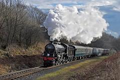 Blast from the Past (garstangpost.t21) Tags: thompson b1 lner littleburrs elr steam smoke locomotive 61264 nikon d5000 nikond5000 exhaust eastlancashirerailway
