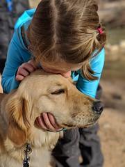 00100lPORTRAIT_00100_BURST20181228151017423_COVER (KevinXHan) Tags: zions national park dog golden retriever cute aww parus trail hike walk nature outdoors google pixel3 photoblog photodiary