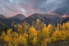 4 Hope Autumn (Aaron Spong Fine Art) Tags: 4 autumn sawatch twin lakes colorado leadville