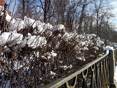 Snow cotton (CarolinaNeves*) Tags: russia moscow snow palace basils cathedral history kremlin
