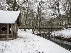 Elswout 2019: Crossing that bridge (mdiepraam) Tags: elswout 2019 haarlem trees snow cabin brook bridge ice