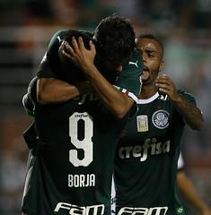 Palmeiras x Bragantino (11/02/2019) (sepalmeiras) Tags: bragantino campeonatopaulista pacaembu palmeiras sep sériea1 gscarpa borja
