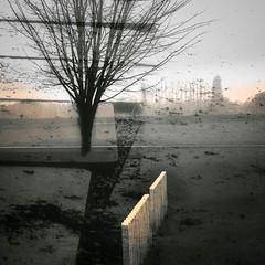 Fading Memory ? (janbeernaert) Tags: wwi trees memorial blackandwhitefineartphotography landscape zwartwit belgium bw olympusomdem5 digital janbeernaert