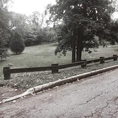 NYBG (tchamber236) Tags: america autumn bigapple bronx empirestate fall newyork newyorkcity northamerica us usa unitedstates unitedstatesofamerica architectural architecture gardens landscape landscaping publicgarden seasons structures ny