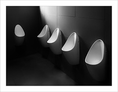 Peixos estressats / Stressed fish. (ximo rosell) Tags: ximorosell bn blackandwhite bw minimal arquitectura architecture abstract abstracció urinario water servicios peces interiors