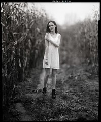 In forgotten fields (lsmart) Tags: 320txp bw f25 175mm aeroektar kodak speedgraphic graflex 4x5 largeformat analog film