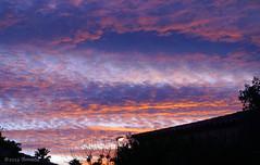 Sunset (♥ Annieta  more off than on) Tags: annieta februari 2019 sonya6000 france frankrijk holiday sunset zonsondergang sky lucht ciel clouds nuages wolken kleur color allrightsreserved usingthispicturewithoutpermissionisillegal natureinfocusgroup