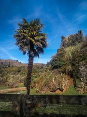 (95Maraa) Tags: tamaraarcehernández tamara mara958 mara arce hernández sky cielo paisaje spain españa cantabria 95maraa blue azul green