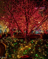 Happy New Year (nebulous 1) Tags: happynewyear happynewyear2019 color lights trees red green yellow white health peace love happiness joy saltlakecity utah ut nikon nebulous1 glene