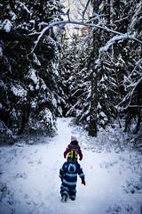 Two explorers (petterikari) Tags: kids forest exploring curiosity winter foliage trees path canon24105