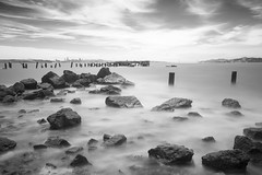 fleming point (eb78) Tags: ca california blackandwhite bw monochrome grayscale greyscale eastbay albany flemingpoint