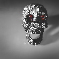 day 88 (Randomographer) Tags: project365 jewel skull red ruby mystical power diamond gem minimal light shadow object jewelry composition paranormal phenomena newage crystal silver 365 88 2019 macro fake antiquities spiritual journey rhinestone lacatrina macabra