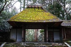 SDQ_1254 (koyaman3422) Tags: 京都 kyoto sigma sdquattro 1770mm 法然院