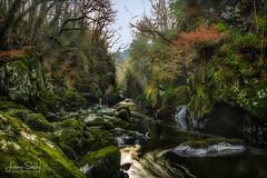 Fairy Glen (Jasper180969) Tags: betwsycoed gorge landscape fairy glen waterfall nature pentaxart pentax k3ii sigma 1750