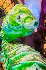 Seahorse Buddy (Thomas Hawk) Tags: america bellagio bellagiohotel clarkcounty lasvegas lasvegasstrip nevada sincity usa unitedstates unitedstatesofamerica vegas seahorse fav10