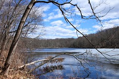 Teatown Lake Reservation #8 (Keith Michael NYC (5 Million+ Views)) Tags: teatownlakereservation ossining newyork ny nyc