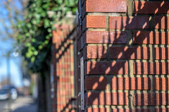 _DSC0313 (Geza (aka Wilsing)) Tags: bokeh fence hff shadowplay nikkor105mm25