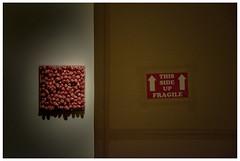 Bloemekenswijk Museum Dr. Guislain - fragile (marc.demeuleneire) Tags: selecteren art museum ghent