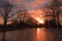 A new morning (Alex Borst) Tags: nederland netherlands niederlande paysbas apeldoorn gelderland guelders nikon d5300 zon zonsopkomst sun sunrise lever du soleil sonne sonnenaufgang ochtend morgen morning matin winter hiver apeldoorns kanaal canal scherpenbergbrug lieren klarenbeek ijs ice