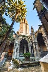 Barcelone-146 (bonacherajf) Tags: barcelona barcelone catalogne catalunya espagne espania spagna cloitre oies cathédrale crèche