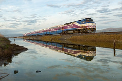 Perfect Reflections (sully7302) Tags: f40ph3c f40 f40ph emd altamont corridor express train commuter trains transport scenic bay area san francisco california meadows water stream reflection spring golden hour alviso