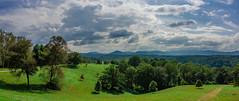 Biltmore Estate Grounds (Moogul) Tags: nikon coolpix coolpixa dx compact biltmore estate trees sky clouds north carolina