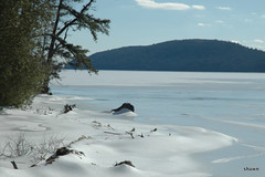 February Chill (adamsshawn390) Tags: winter february chill cold snow quabbinreservoir ice water driftwood
