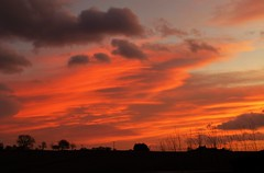 Sunday Morning Sunrise..x (Lisa@Lethen) Tags: sunday morning sunrise mild warm february cloud sun trees silhouette