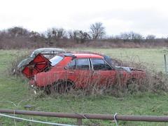 Photo of Scrap cars in a Field.