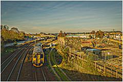 150216 Newton Abbot 21.02.19 (Chris W Brown) Tags: devon class1502 rail newtonabbot 2a621532paigntontonewtonabbot railway dieselmultipleunit gwr 150216 dmu railways greatwesternrailway places transport
