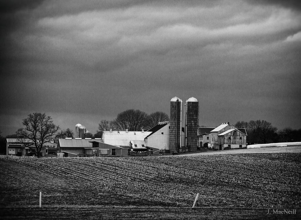 6c852a76210 (Jen MacNeill) Tags  blackandwhite bnw bw farm farms barn silo ag  agriculture amish