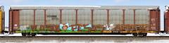 Unfinished Rusle/Pesos/?? (quiet-silence) Tags: graffiti graff freight fr8 train railroad railcar art rusle pesos unfinished autorack ns norfolksouthern ttgx981734