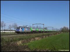 RTB 186 300 + Pannonia // Boxtel, Roond (Loco Locon) Tags: loco locon trein train boxtel cargo rtb rtbc un1170 ethanol pannonia ketels keteltrein 186 traxx 186300 antwerpen anvers